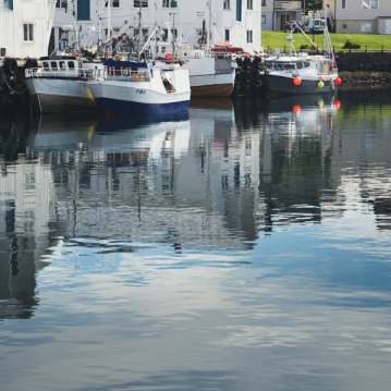 reflections-6