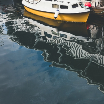 reflections-9